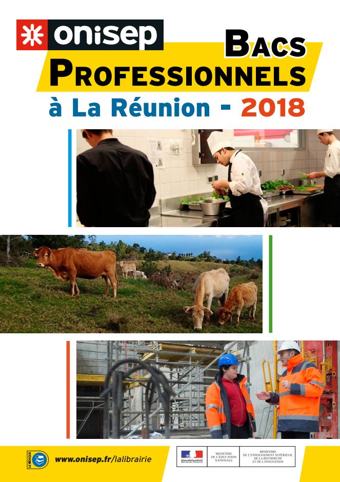 Les bacs PRO à la Réunion